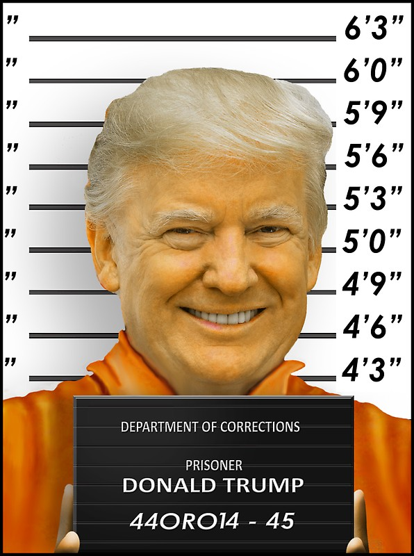 Trump convict photo